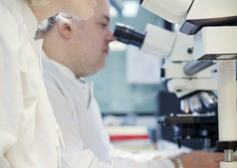 Researchers above microscope