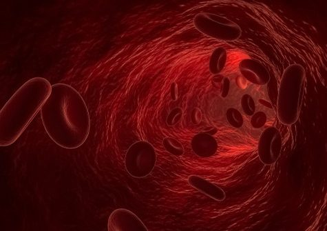 Globules rouges - Avancées scientifiques