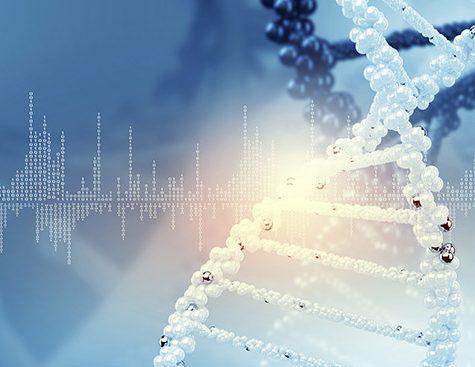 Integragen - high throughput sequencing