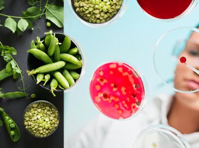 webinar foodtech